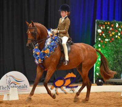 Broadwater Park Cartier & Elizabeth Taylor 2018 National Childs Galloway Champions
